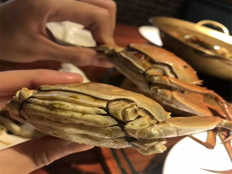 盘锦河蟹多少钱一斤|量子王二力河蟹价格实惠的盘锦河蟹供应