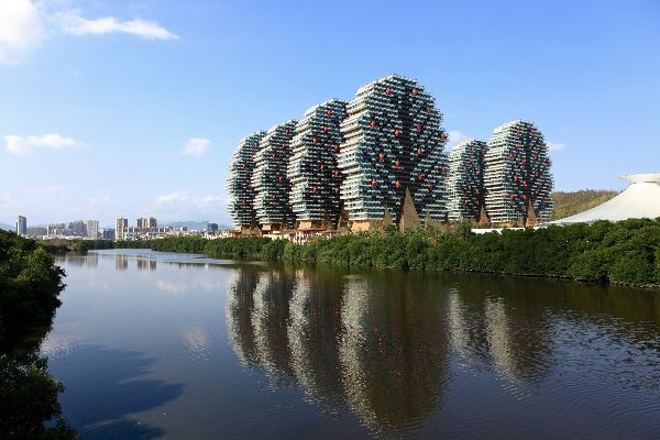 大樹公館位置_三亞經驗豐富的房產中介公司