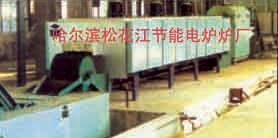 哈尔滨松花江节能电炉厂-传用送带式生产线