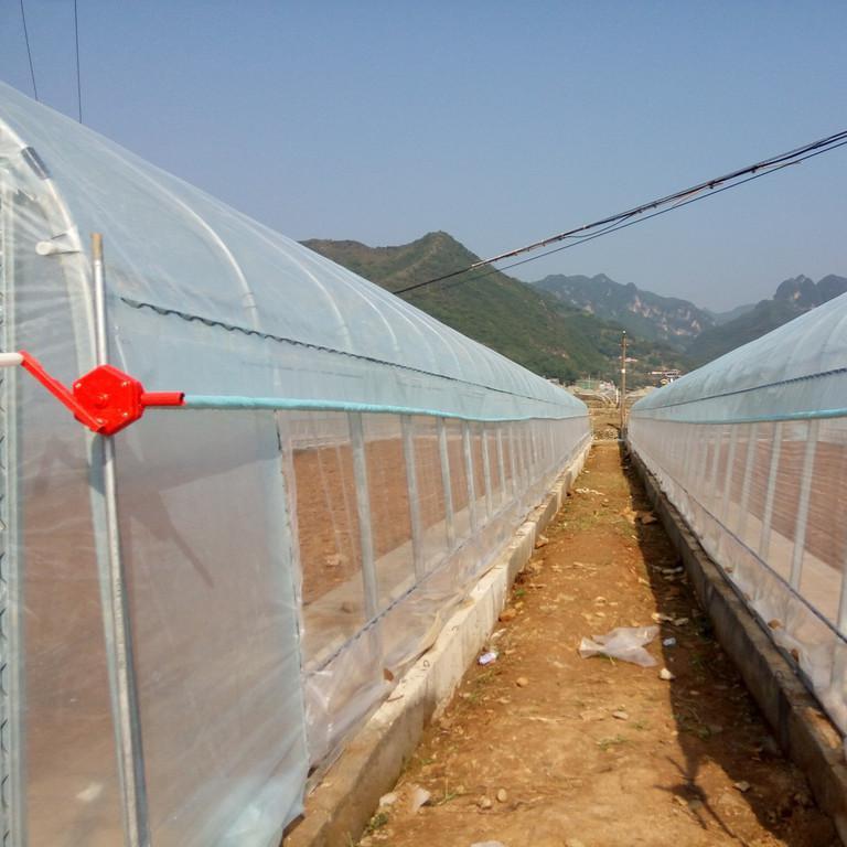 鋼結構養殖