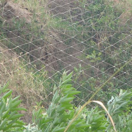 菱形邊坡防護網價格|大量供應口碑好的菱形邊坡防護網