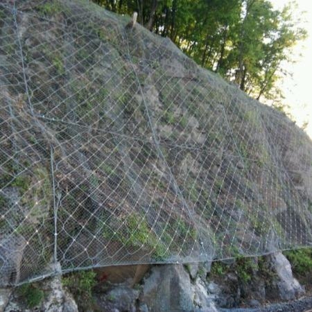 江蘇主動環形網|成帥提供衡水地區優良的主動環形網