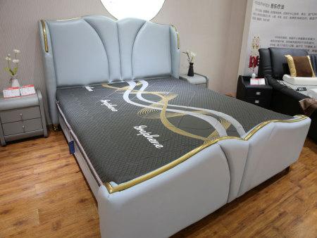 河南石墨烯音乐地磁床垫-实惠的石墨烯音乐地磁床垫供应商,当选汤米博士