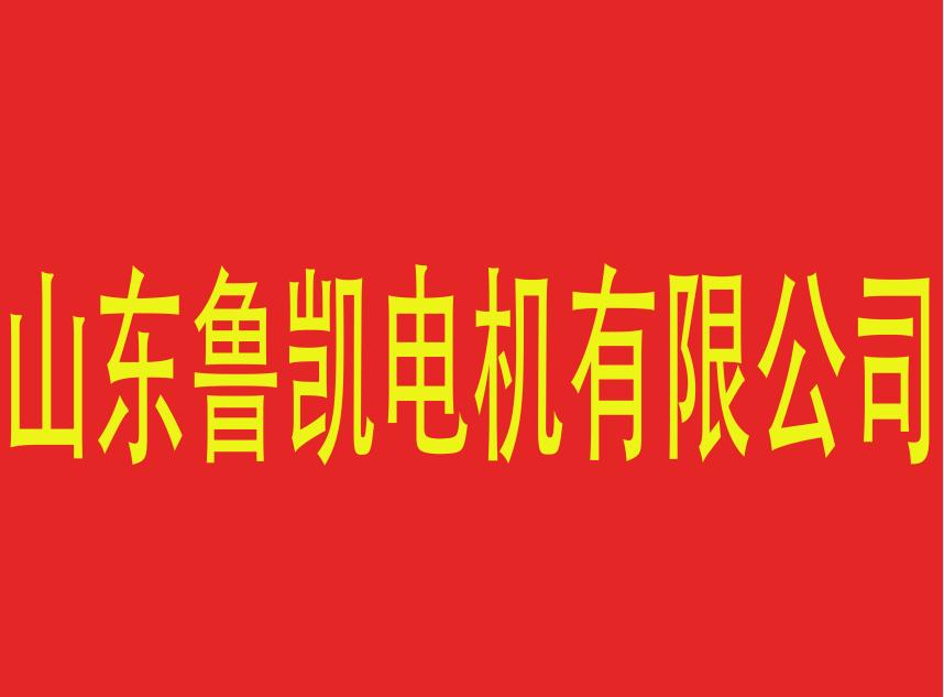 山东鲁凯电机有限公司