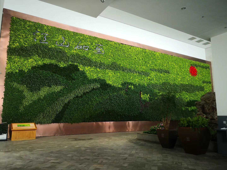 哈爾濱書雅園藝提供專業的哈爾濱花卉租賃_綠植墻租賃