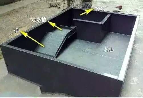 定制惠州定做龟箱厂家-知名的惠州定做龟箱厂家倾情推荐