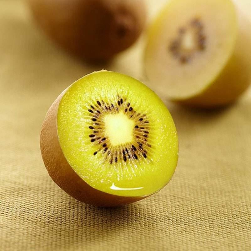 长期供应黄心猕猴桃-口碑好的黄心猕猴桃