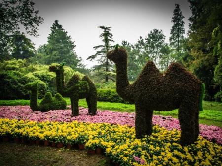 動物綠雕哪家有|動物綠雕制作廠家