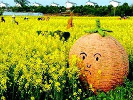 稻草人工艺品哪里买-稻草人工艺专业厂家