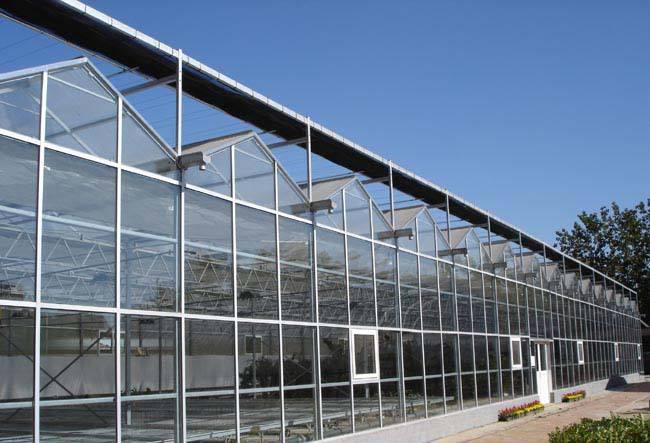 智能溫室大棚建造-結實耐用的文洛溫室大棚哪里有