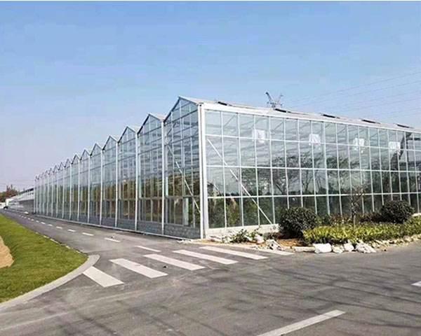 日光温室设计//日光温室建设