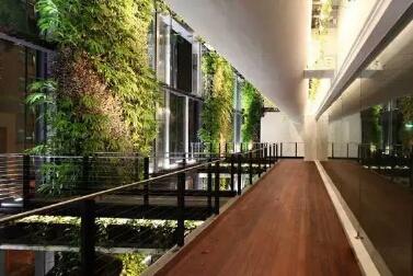 廣東植物墻公司-聲譽好的垂直立體綠化生態設計公司優選植物墻