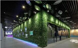 海南生態植物墻公司推薦-廣州創新型的垂直立體綠化生態設計公司