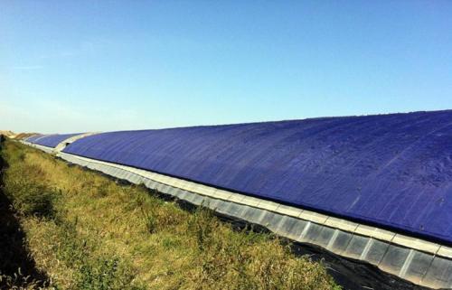 榆林大棚保溫被-耐用的陜西大棚保溫被寧夏鑫廣供應