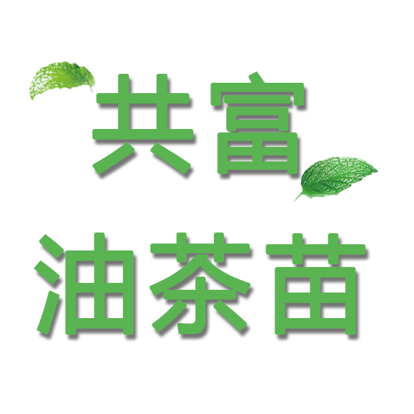 攸县共富油茶苗繁育专业合作社