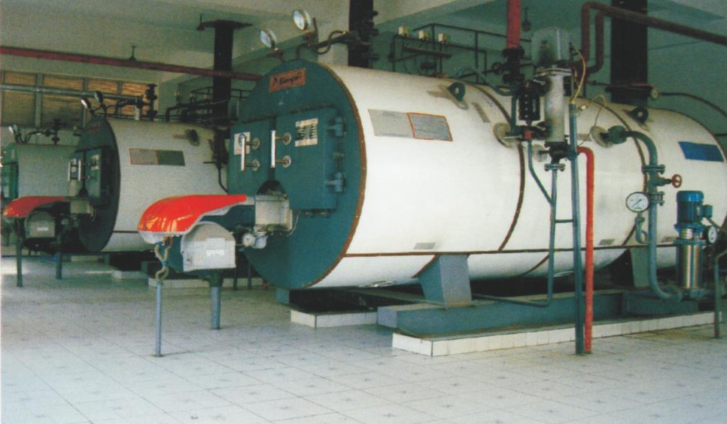 2吨低氮蒸汽发生器_具有口碑的成都锅炉批发供应商