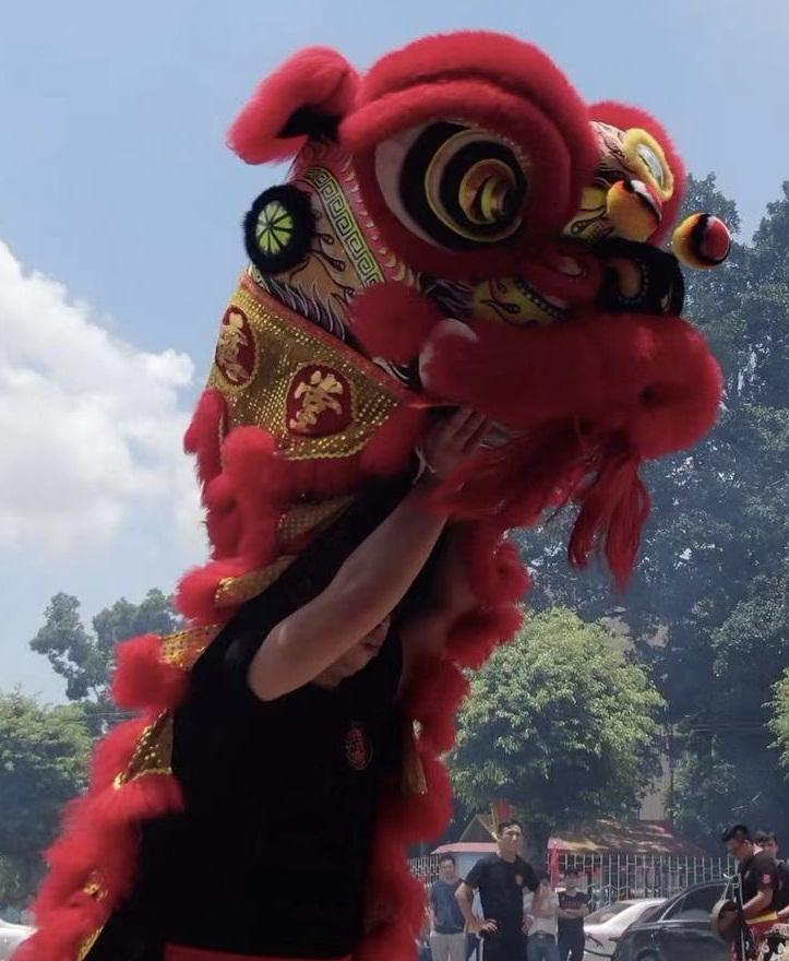 醒狮表演各地开业晚会年会舞龙13711263978龙狮团