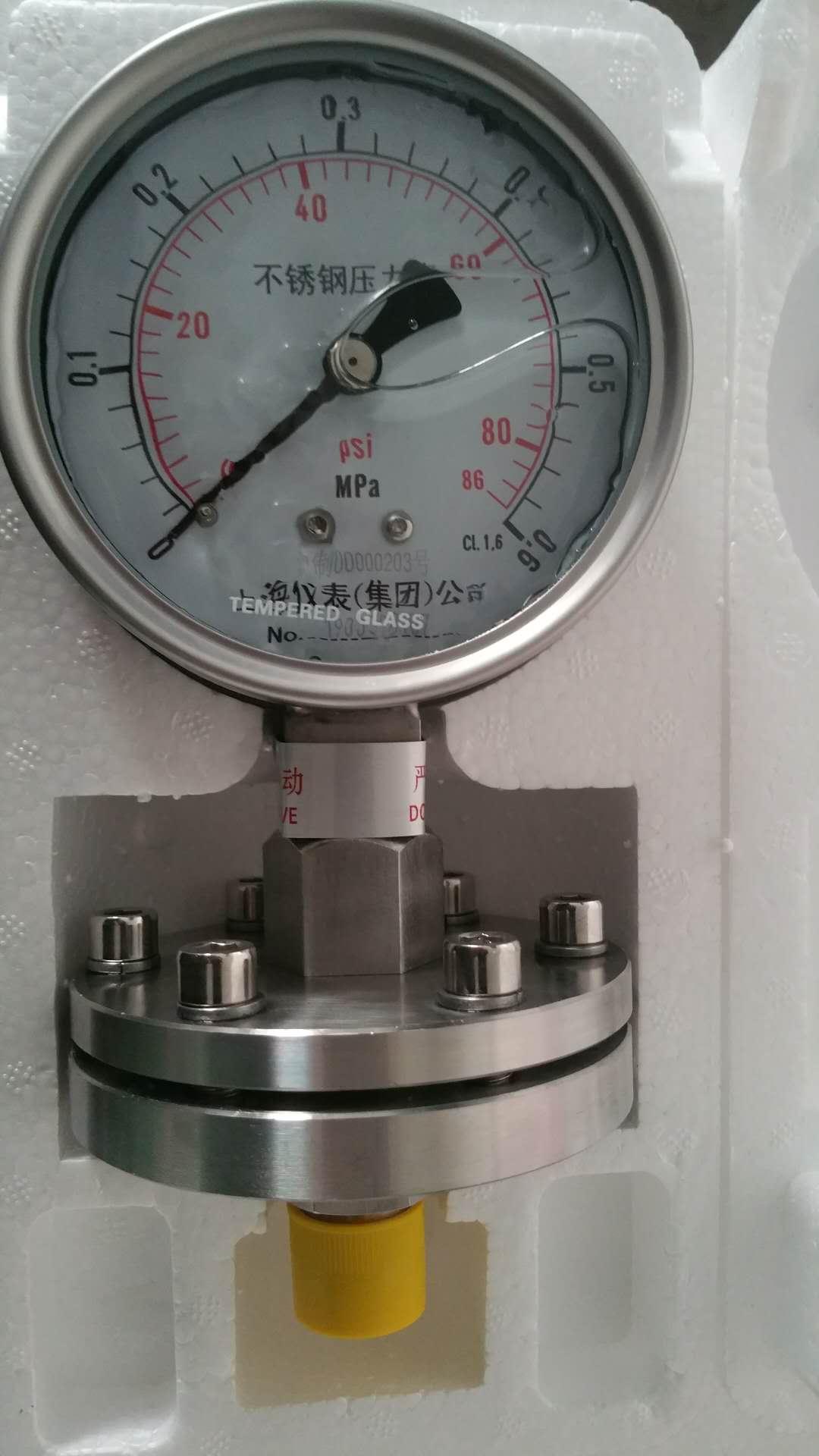 隔膜压力表Y-100ML_上仪-实力商家好口碑