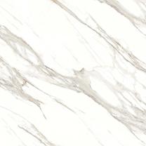 設計新穎的雙慶瓷磚-實惠的雙慶瓷磚普金新商貿有限公司供應