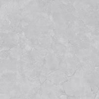 普金新商貿有限公司提供的雙慶瓷磚好不好 特色的雙慶瓷磚