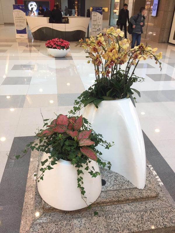哈爾濱花卉供應商哪家好-鶴崗植物墻公司