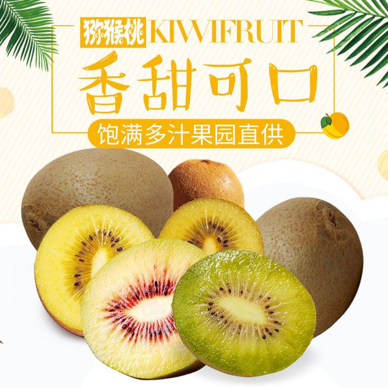 可信賴的南陽西峽獼猴桃批發商 長沙優惠的獼猴桃
