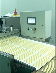 内蒙古奶食品干燥机哪家好 内蒙古划算的微波杀菌设备供应
