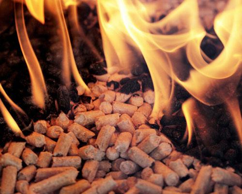 甘肃生物质颗粒燃料厂家|销量好的甘肃生物质颗粒燃料品牌推荐