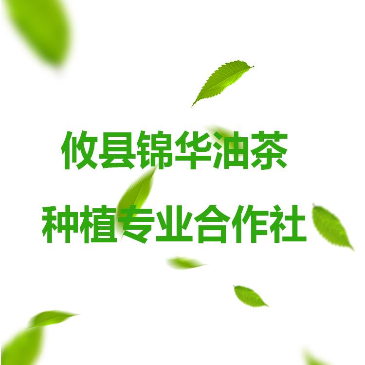 攸县锦华油茶种植专业合作社