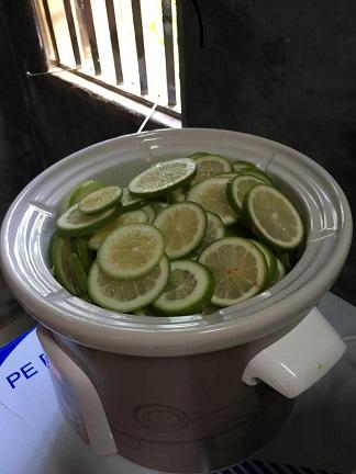 檸們檸檬膏供應商推薦-檸們檸檬膏做法