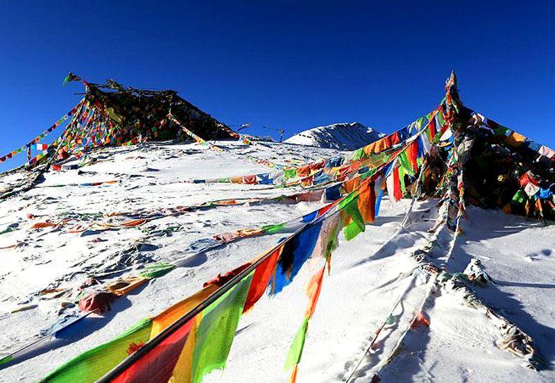 西藏落户高考西藏高考咨询卓卓康巴