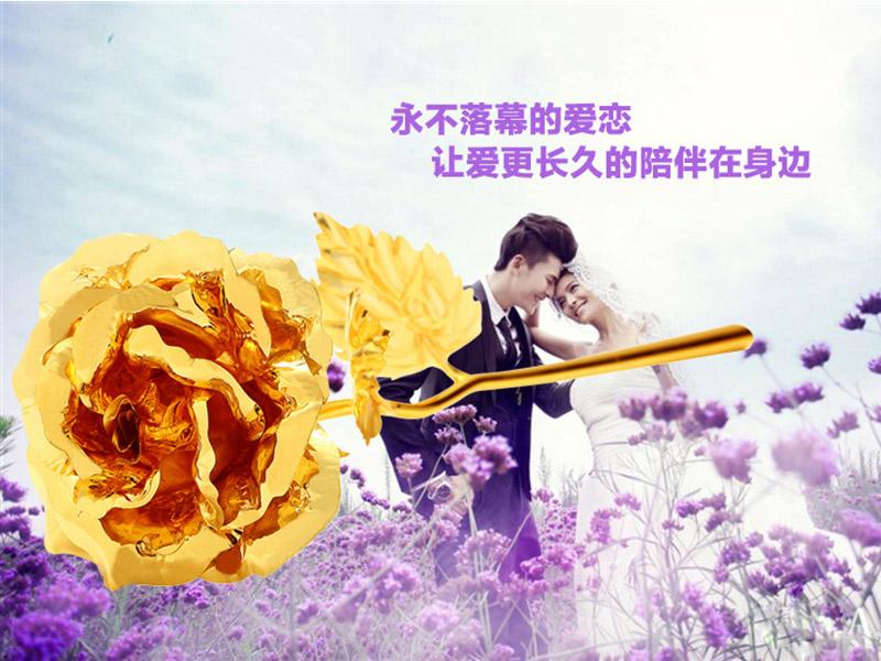 金箔玫瑰花直销|温州知名的金箔玫瑰花厂商推荐