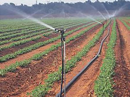 《您正确的选择》喷灌带供应——喷灌带哪里有