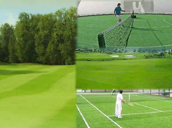 青海人造草坪-西宁哪里有供应性价比高的西宁人造草坪
