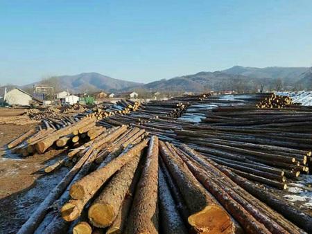 防腐木杆价格-抚顺防腐木杆知名厂商
