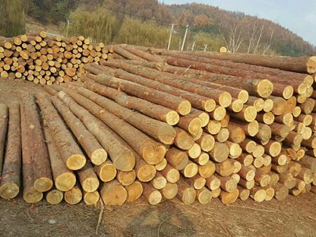 丹东防腐油木杆-大量出售口碑好的防腐油木杆
