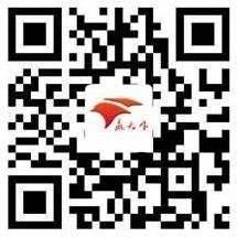 林州惠赢安评咨询服务