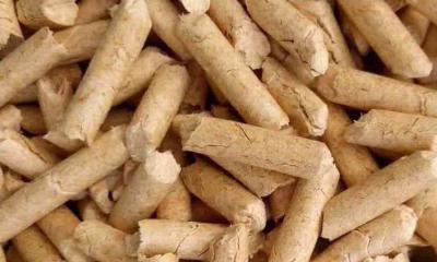 哈尔滨卓正环保,您值得信赖的生物质颗粒批发销售商 木屑颗粒厂家
