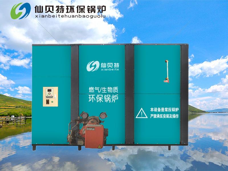 廣東生物質鍋爐廠家|山東專業的環保鍋爐供應