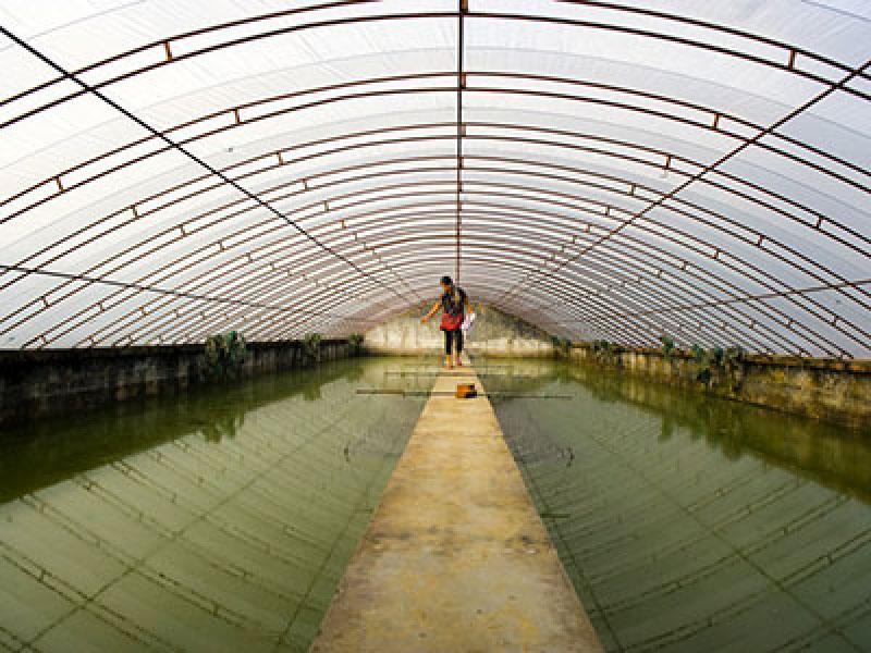 水产养殖专用膜厂家