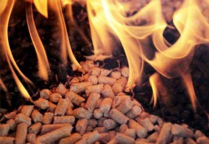 甘肃生物质燃料,庆阳生物质燃料-推荐性价比高的酒泉生物质燃料