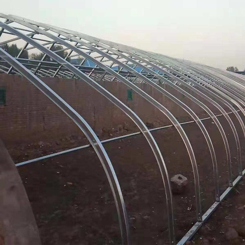 几字钢日光棚生产厂家哪家好——河北新野温室