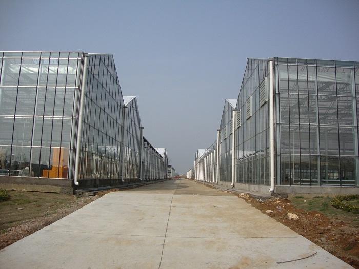 玻璃温室大棚连栋温室大棚智能温室大棚-佰辰温室材料公司