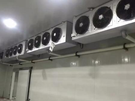 郑州冷风机如何维护-规模大的冷风机厂商推荐