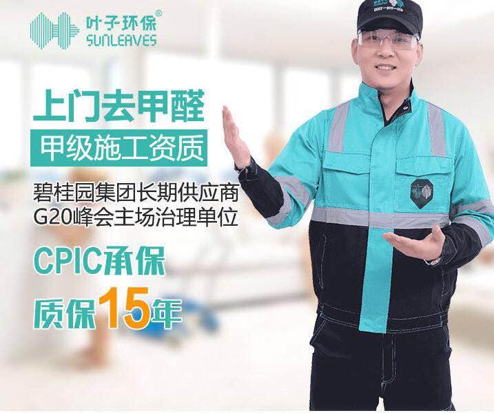 叶子环保,治理室内空气污染,中国除醛网