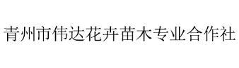 青州市伟达花卉苗木专业合作社