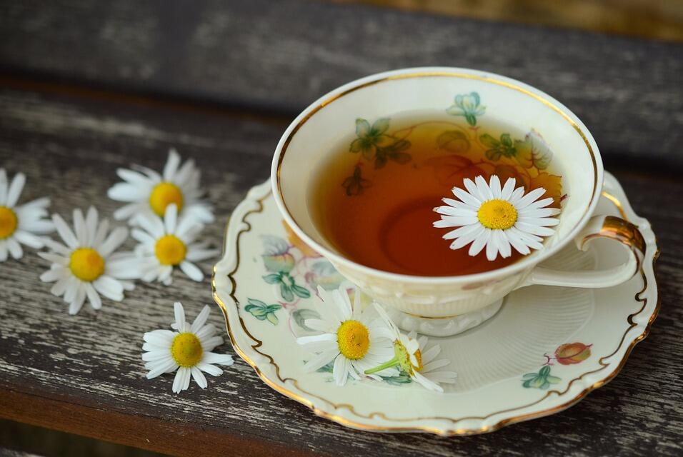 朝鲜茶叶如何进口难倒你?拜托,问过熙海吗