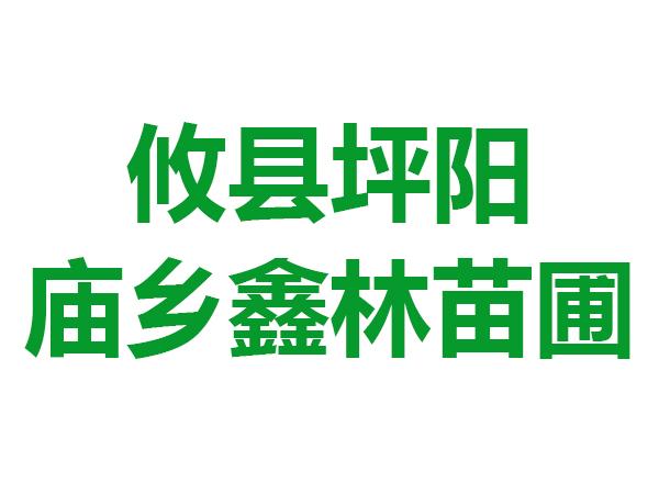 攸县坪阳庙乡鑫林苗圃