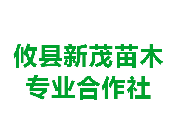 攸县新茂苗木专业合作社