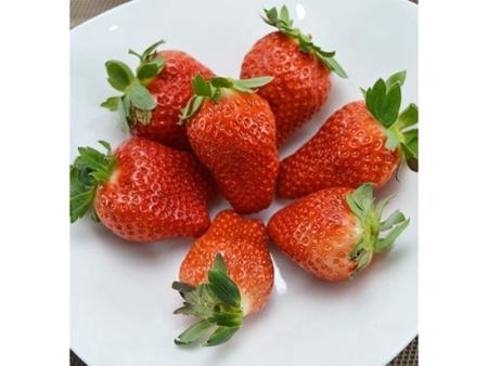 湖南红颜草莓苗如何种植你了解吗?